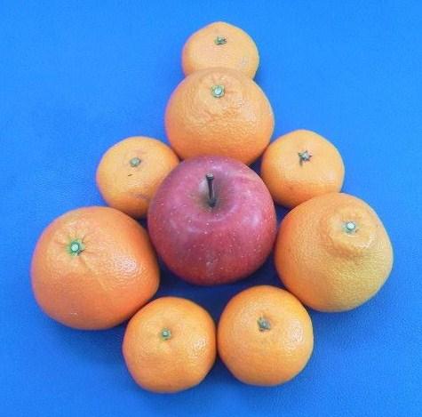 リンゴとみかん.jpg